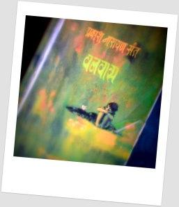 Vanvaas by Prakash Narayn Sant